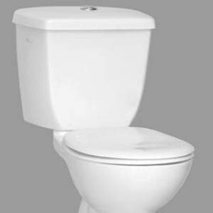 One woman claims the robot toilet knocked her off the seat.