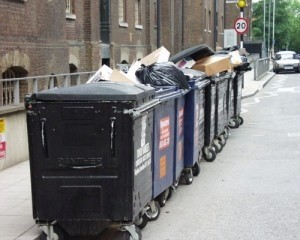 Residents in Whitby filled 30 bin bags with rubbish collected from the local area.